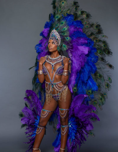 Pavone - Frontline with Backpack, Additional Large Headpiece & Feathered Leg Pieces